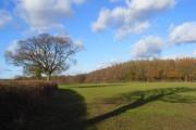 Farmland, Naphill