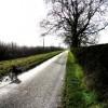 Towards Asfordby