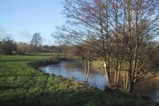 The River Otter at Newton Poppleford