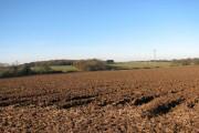 View towards Long Plantation