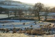 Pastures, Leadgate