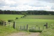 Farmland, Greenrig