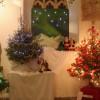 St Sennen Church Festival of Christmas Trees