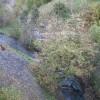 River Wye from railway viaduct