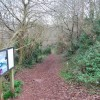 Footpath, Occombe Woods