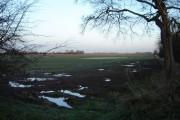 Very  Wet  Field