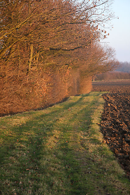 Footpath to Skipper's Farm
