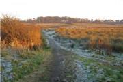 Auchengree Farmland Trail