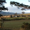 Mellanbrae Farm from Aquhorthies Wood