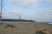 Benacre beach and broad