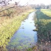 Wey & Arun Junction Canal