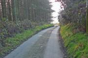 Road down Mynydd Emroch to Pen-y-cae