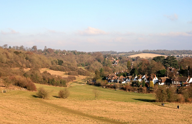 Chipstead Downs