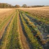 Bridleway and farm track on Cooting Down
