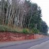 Wall in Totnes Road
