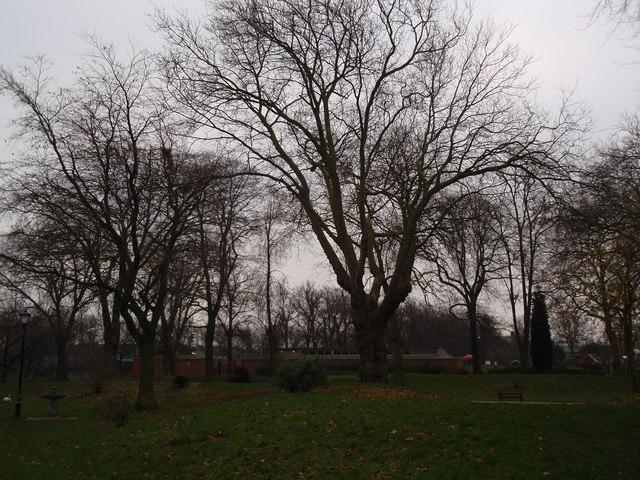 Part of the Arboretum in Derby
