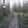 Footpath through Oxenden Wood
