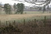 Farmland at Halmyre
