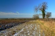 Farmland near Sapperton