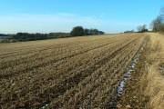 Farmland near the Wysis Way, near Sapperton