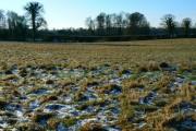 Farmland south of Sapperton