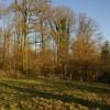 Footpath below Hill Farm