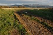 Farmland near Mathon