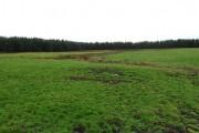 Field by Harthill