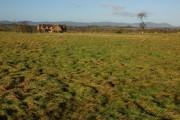 Cottage and farmland at Shuthonger