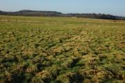 Farmland near Twyning Farm
