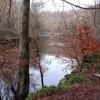 River Ayr In Winter