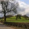 Upton St Leonards: Nut hill