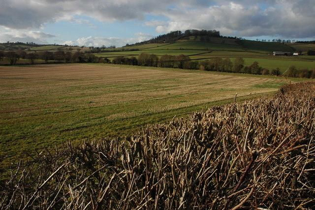 Farmland at Dinedor