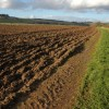 Headland footpath to Dinedor