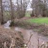 Rudhall Brook in full flow