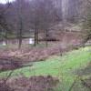 Lake below Linton Hill