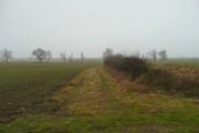 Farmland at Yawthorpe