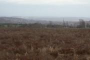 Waste ground on Mapperley Plains