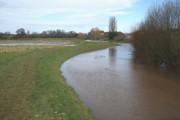 River Clyst in full flood