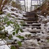 Steps up to the Dove Valley Trail