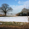 Snow-covered fields, Gulling Green