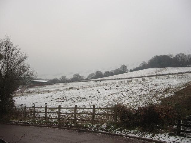 Hillside Farmland
