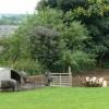 Shabden Park Farm