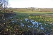 Farmland, Hadley Wood, Hertfordshire