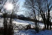 Snowy landscape near Joys Green