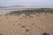Swansea Bay at half-tide