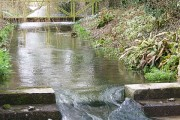 Mill race, River Piddle
