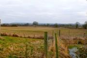 Farmland near Yetminster