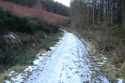 Wintery  World