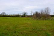 Farmland near Longburton